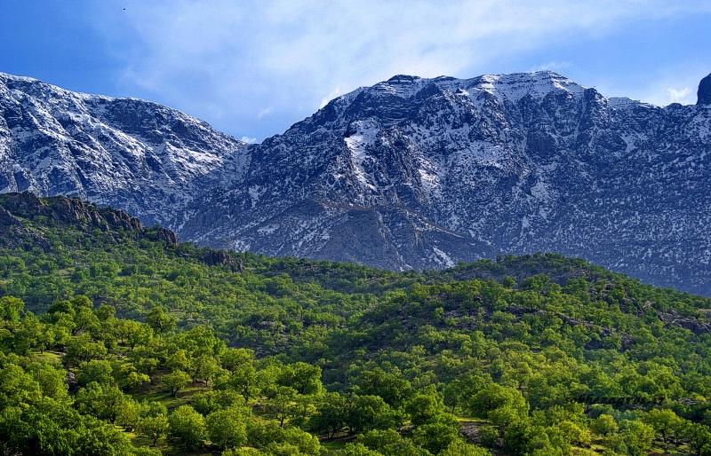 گزارش تصویری جادوی طبیعت در کوه خامی